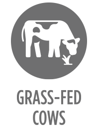 grass-fed- cows